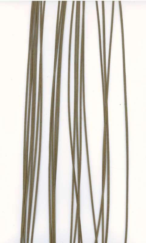Kožený řemínek plochý barva zelená šíře 2mm délka 1m.