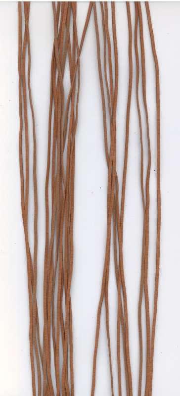 Kožený řemínek plochý barva světle hnědá šíře 2mm délka 1m