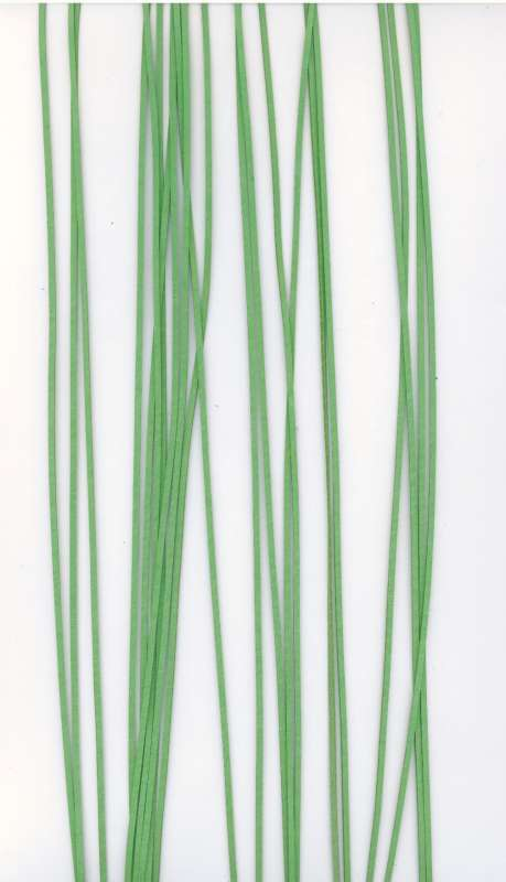 Kožený řemínek plochý barva světle zelená šíře 2mm délka 1m